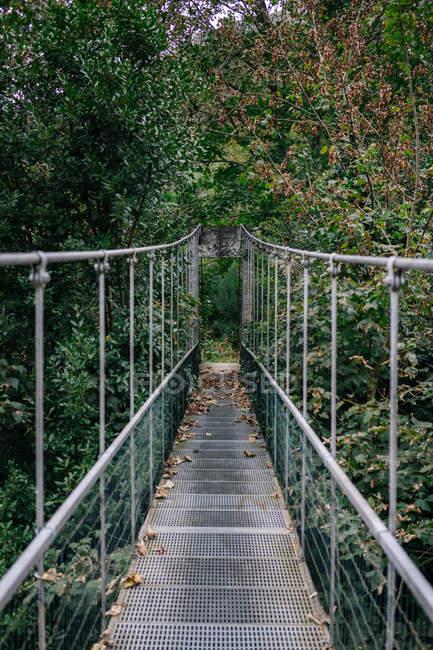 Pont suspendu en métal à travers la forêt buissonnante — Photo de stock