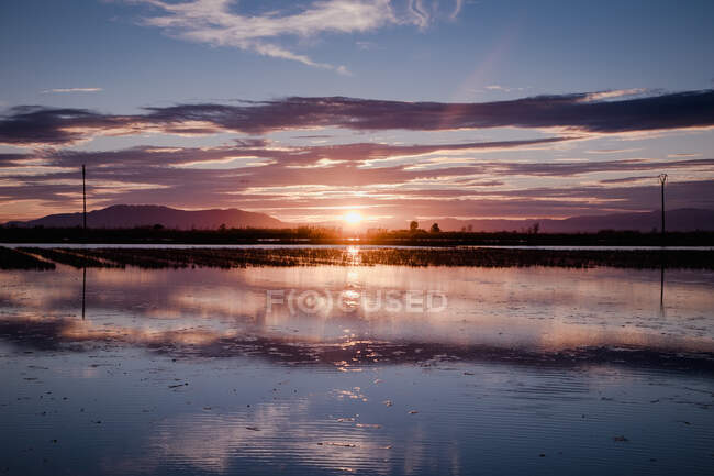 Beautiful sunset over river delta — Stock Photo