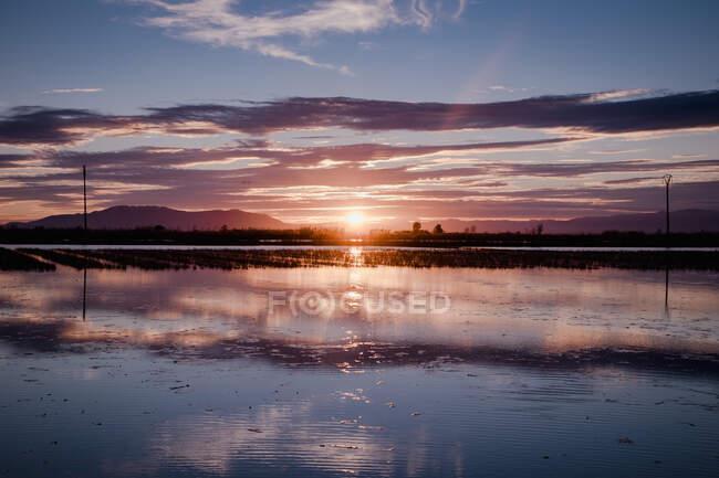 Beau coucher de soleil sur le delta de la rivière — Photo de stock