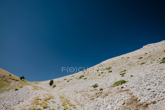 Horizon de terra brilhante com arbustos verdes raros e céu azul claro com meia lua visível — Fotografia de Stock