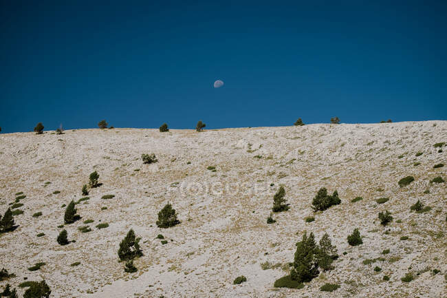 Horizon of bright land with rare green bushes and blue clear sky with visible half moon — Stock Photo