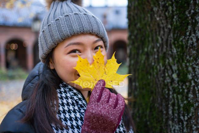 Mujeres asiáticas vestidas con ropa cálida mirando a la cámara y cubriendo la cara con hojas de arce amarillas mientras se encuentran en la Catedral de Oslo en Noruega. - foto de stock