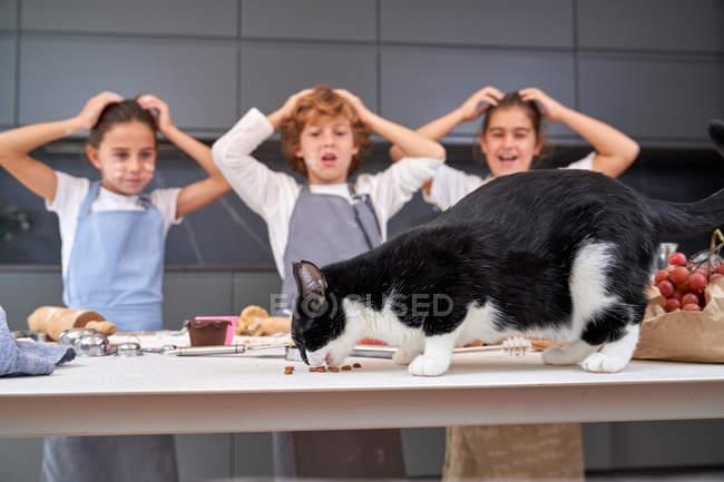 Niños y niñas impactados en delantales mirando al gato comiendo ingredientes en la mesa en la cocina moderna - foto de stock