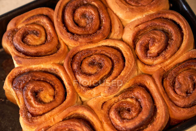 Tasty homemade rolls on baking tray — Stock Photo