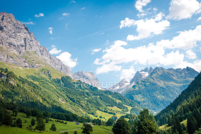 Scenery picturesque view of houses on green meadow in Alps mountains in Switzerland — Stock Photo