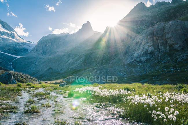Paesaggio incredibile di fiume che scorre tra le pietre tra le montagne in Svizzera — Foto stock