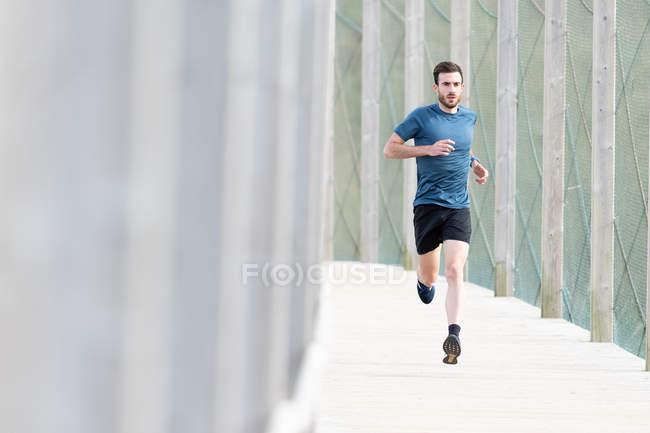 Высокомотивированный бородатый спортсмен в синей футболке и шортах, бегущий на улице под прикрытием, глядя в камеру — стоковое фото