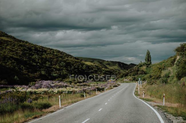 Vazio sinuoso estrada asfalto correndo através de colinas verdes no interior da Nova Zelândia com céu tempestuoso nublado em segundo plano — Fotografia de Stock