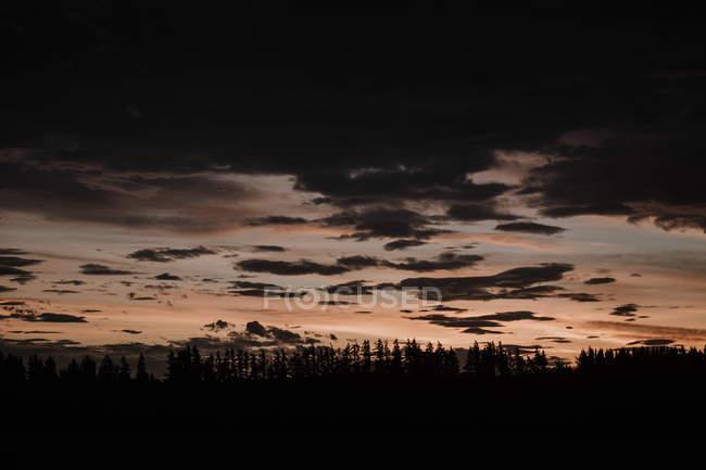 Ciel nuageux en soirée au-dessus du champ sombre — Photo de stock