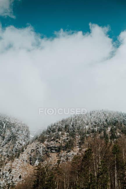 Paysage incroyable de collines couvertes de forêt dans la neige sous ciel bleu clair nuageux — Photo de stock