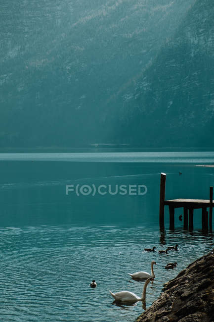 Serene landscape on empty wooden pier in crystal calm water reflecting sky and snowy mountains in bright daytime in Hallstatt — стокове фото