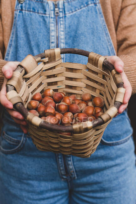From above crop person showing harvest of ripe tasty brown hazelnut in cute wicker basket — Stock Photo