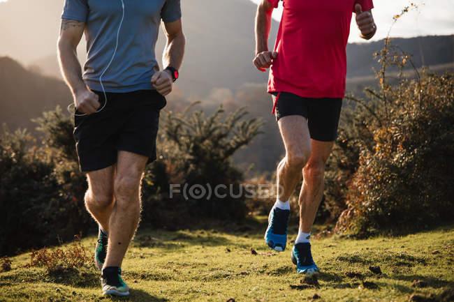 Жорстокий образ сильних активних чоловіків у спортивному одягу, що біжить разом на зеленій траві в горах у сонячний осінній день. — стокове фото