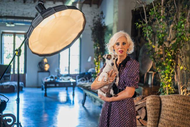 Calm senior woman with pet in modern photo studio — Stock Photo