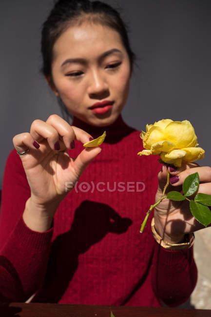 Молодая азиатка, сидящая за деревянным столом и сосредоточенная на отрывании лепестков желтой розы — стоковое фото