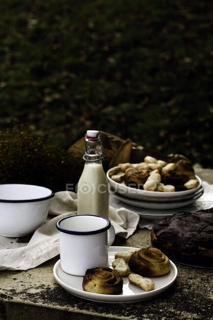 High angle of yummy cake and buns on ceramic plates in composition with fresh milk in glass bottle beside fragrant bouquet of wildflowers on stone table against blurred countryside with colorful trees — Fotografia de Stock