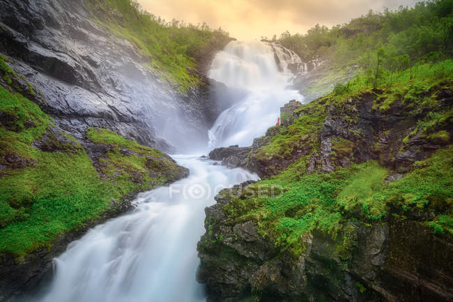Fast speedy mountain river streaming down between rocky stony hills covered with green trees and grass in Norway — Stock Photo