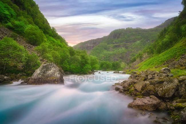 Rápido río de montaña rápido que fluye entre colinas pedregosas rocosas cubiertas de árboles verdes y hierba en Noruega - foto de stock