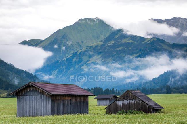 Живописный пейзаж маленького очаровательного дома на газоне с сочной зеленой травой рядом вечнозеленый лес и высокие горы в Австрии — стоковое фото