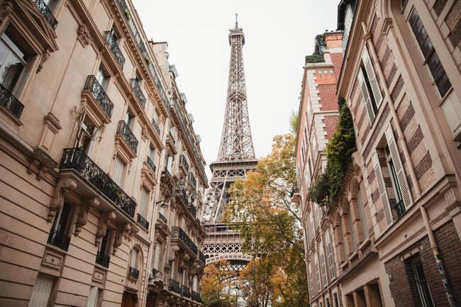 Вид на Эйфелеву башню и старые здания Парижа с улицы Франции осенью — стоковое фото