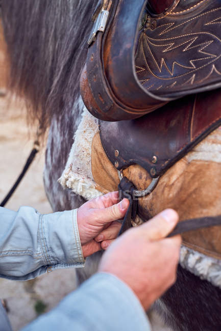Cropped unrecognizable man hands placing saddle on a horse — Stock Photo