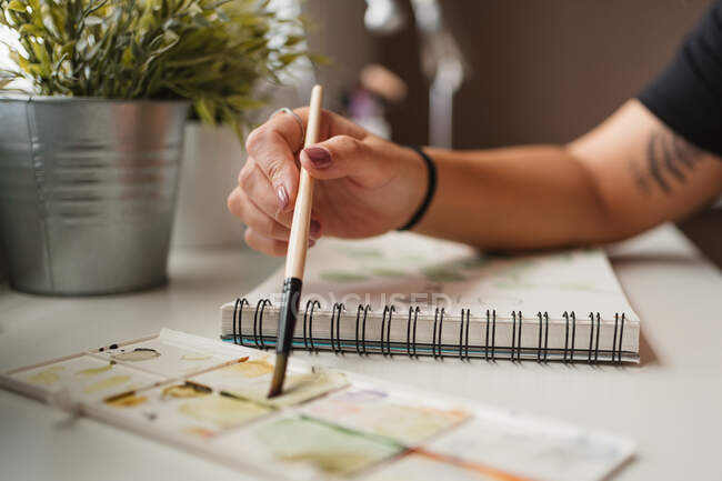 Anonymous female artist drawing illustration at home — Stock Photo