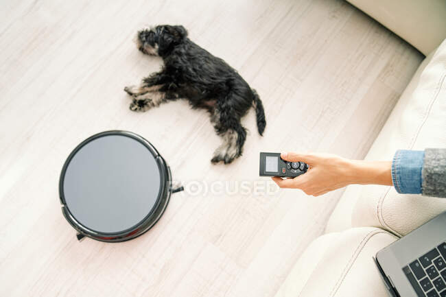 From above crop hand of female using remote control for robotic vacuum cleaner while sitting on sofa with laptop and little dog sleeping on light wooden floor — Stock Photo