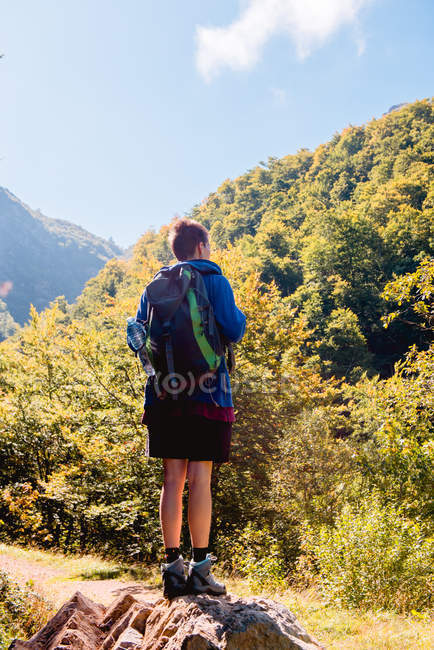 Back view of faceless hiker with backpack looking at sunlight while standing on hillside in forest in summer day — Stock Photo