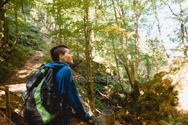 De cima turista de pé na ponte de madeira e olhando para a paisagem natural na floresta no verão — Fotografia de Stock