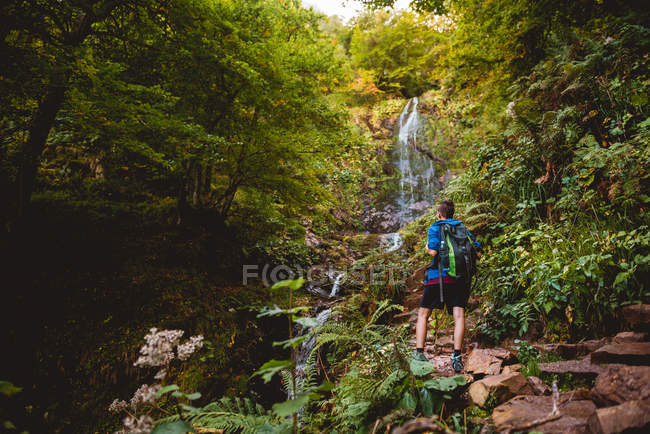 Back view of woman walking with backpack near waterfall in forest in summer day — Stock Photo