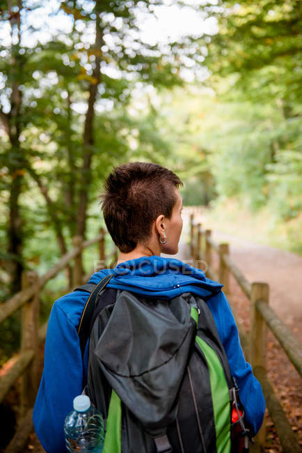 From above back view of tourist standing on wooden bridge and looking at natural landscape in forest — Stock Photo