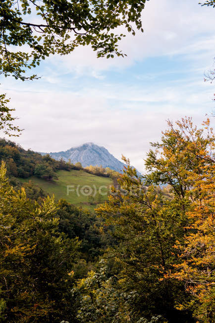 Wonderful view of majestic mountain peak and autumn colorful forest in cloudy day — Stock Photo