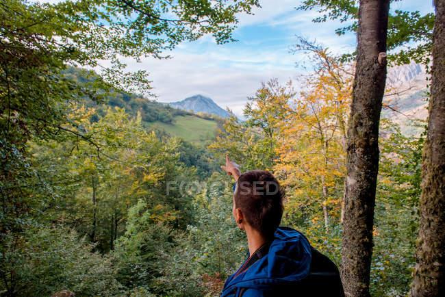 Retrovisore del turista femminile attivo che mostra sulla direzione di vetta della montagna mentre si leva in piedi sulla collina nella foresta di autunno — Foto stock