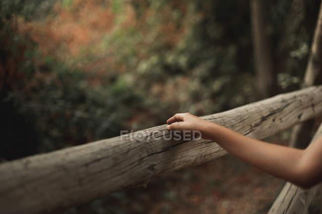 Abgeschnittenes Bild einer Frau, die Holzzaun in friedlichem Park berührt — Stockfoto