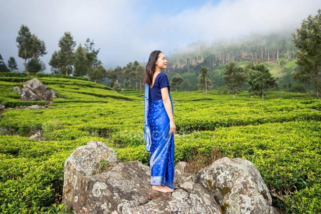 Бічний вид задоволеної жінки азіатського походження в синьому сарі, що стоїть на скелі посеред чайних полів у Хапуталі (Шрі - Ланка). — стокове фото