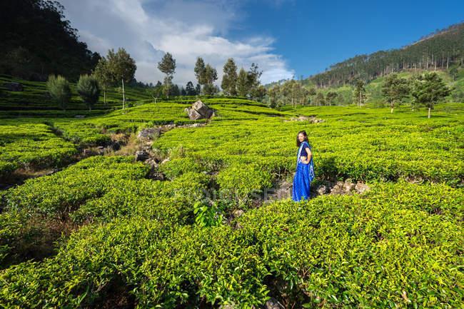Веселая женщина в синей традиционной одежде смотрит в камеру, стоя на чайных лугах в Хапутале на Шри-Ланке — стоковое фото