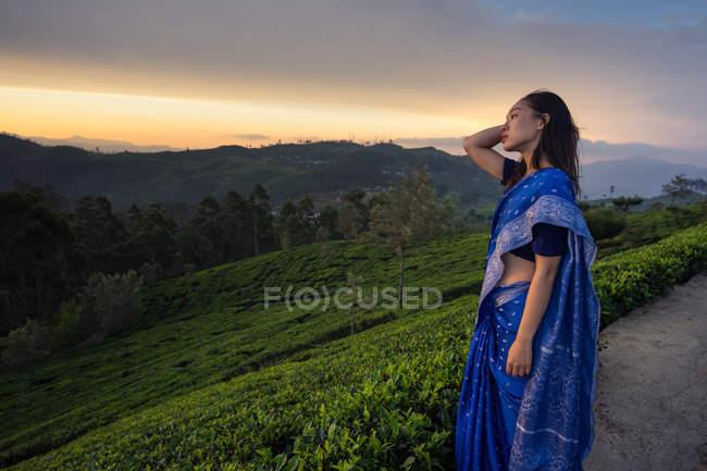 Боковой вид женщины в синем сари, смотрящей на живописный закат, стоя на чайных полях в Хапутале на Шри-Ланке — стоковое фото