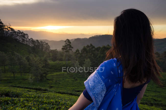Back view of woman in blue sari watching at picturesque sundown while standing on tea fields in Haputale in Sri Lanka — Stock Photo
