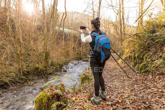 Anonymous female trekker taking photo on smartphone in forest — Stock Photo