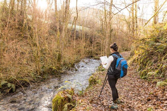 Unrecognizable female trekker reading map in forest — Stock Photo