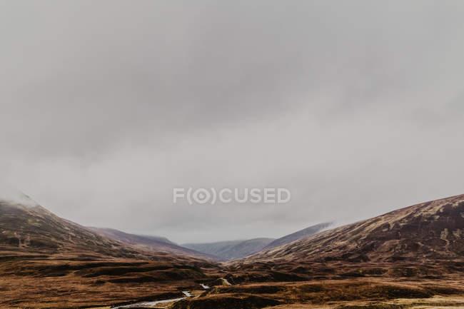 Ландшафт осеннего широкого парка с шипами и туманом осенью в пасмурный день — стоковое фото