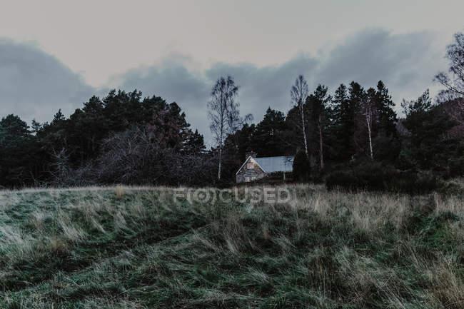 Каменный дом со светом в окнах возле осеннего леса с деревьями в вечернее время — стоковое фото
