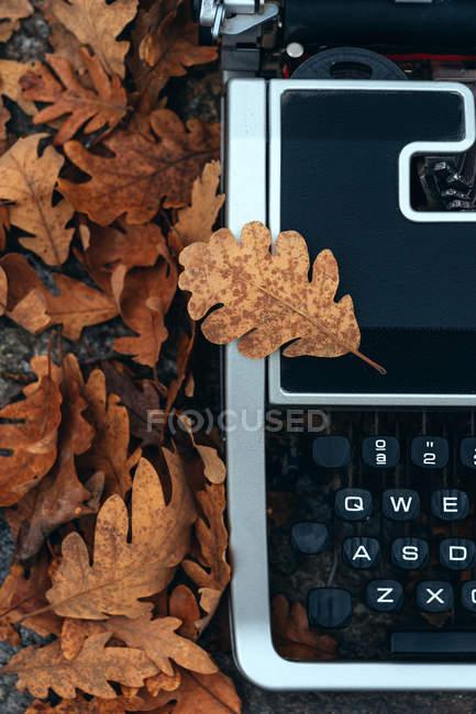 Primer plano de la máquina de escribir vintage cubierta de hojas de roble en otoño - foto de stock