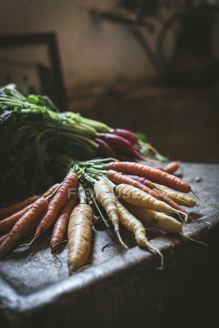 Спелые морковки рядом с редиской на столе — стоковое фото
