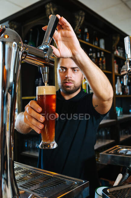 Serious barman in black shirt pouring beer in glass from beer tap working in bar — Stock Photo