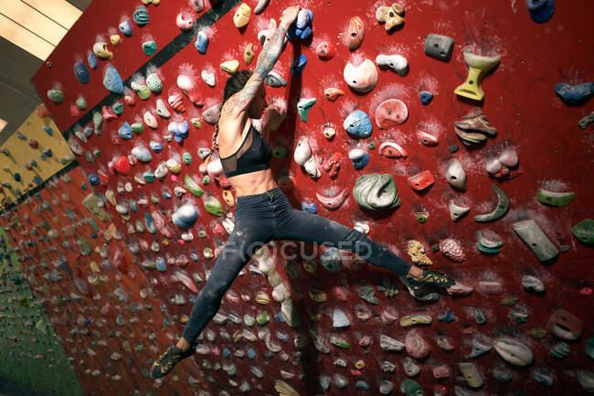 Vista lateral da mulher atleta tatuado mulher poderosa escalada na parede colorida com bordas para alpinistas no quarto — Fotografia de Stock
