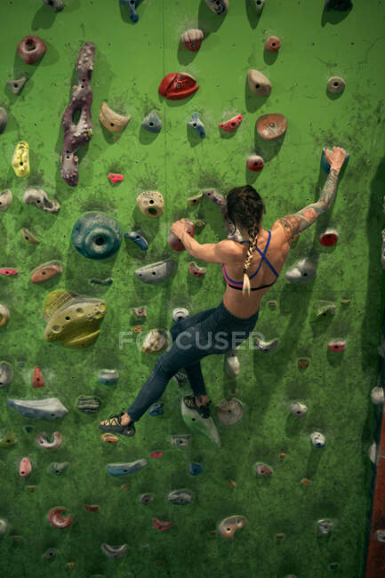 Back view of unrecognizable athlete tattooed powerful woman climbing on colorful wall with ledges for climbers in room — Stock Photo