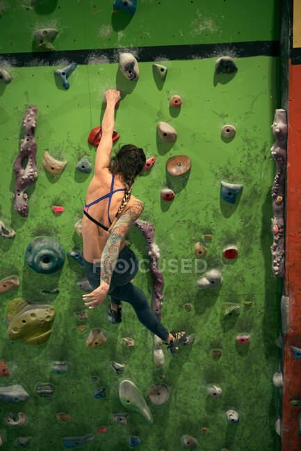 Visão traseira de atleta irreconhecível tatuado mulher poderosa escalando na parede colorida com bordas para alpinistas no quarto — Fotografia de Stock