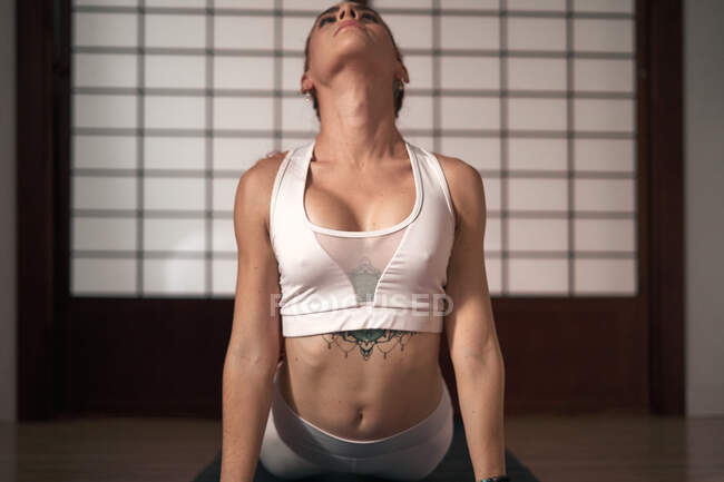 Сконцентрована молода леді в спортивному одязі займається йогою в Кобра-По вдома, дивлячись вгору. — стокове фото