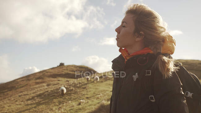 Carefree woman enjoying wonderful nature landscape and sea while standing on cliff in Ireland near herd of sheep in a meadow with closed eyes — Stock Photo